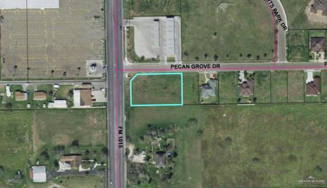 00 Pecan Grove Drive, Weslaco, TX 78599 (MLS #315124) :: The Ryan & Brian Real Estate Team