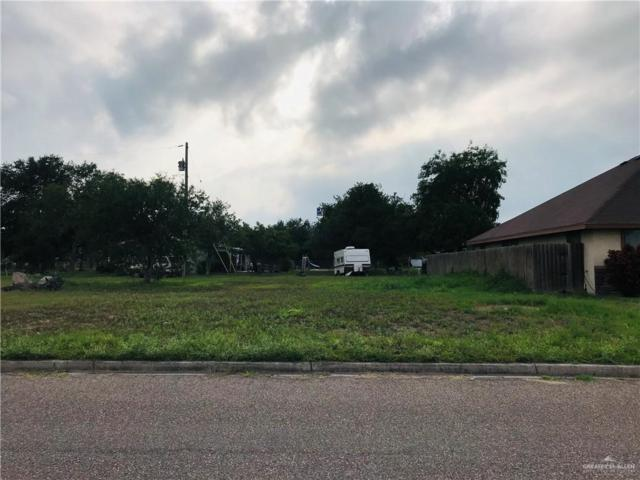 705 Aurora Drive, Alamo, TX 78516 (MLS #315141) :: The Ryan & Brian Real Estate Team