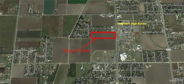 1015 Fm 1015 Street, Progreso, TX 78579 (MLS #316654) :: The Ryan & Brian Real Estate Team
