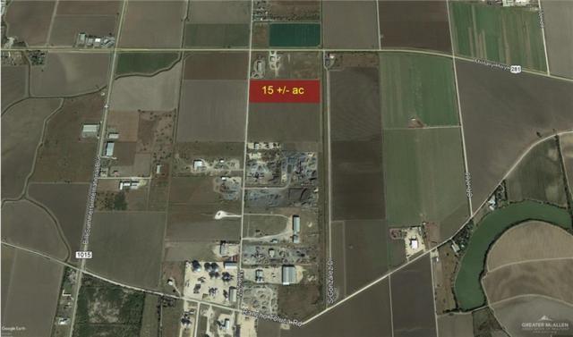 00 Mile 2 W, Progreso, TX 78579 (MLS #316656) :: HSRGV Group