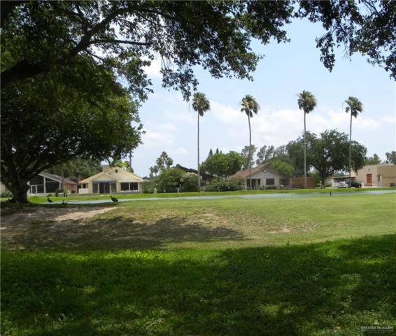 423 Northcutt Drive, Alamo, TX 78516 (MLS #316741) :: The Ryan & Brian Real Estate Team