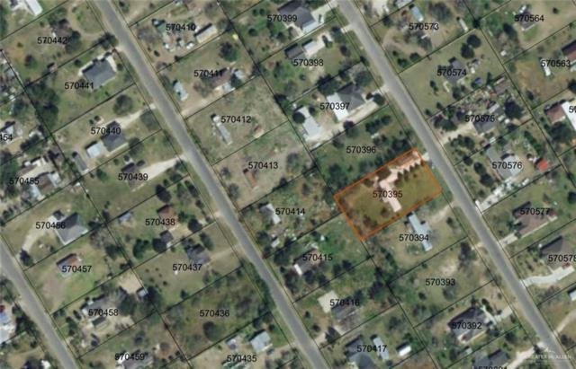 16217 Monte Suma Drive, Edinburg, TX 78541 (MLS #317198) :: The Ryan & Brian Real Estate Team