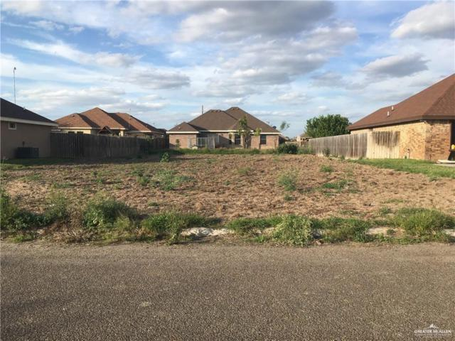 0 Santa Lucia, Rio Grande City, TX 78582 (MLS #317337) :: Jinks Realty