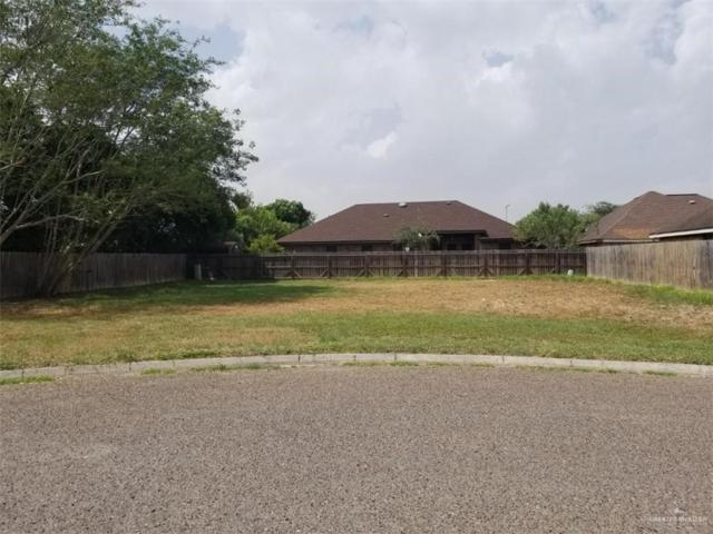 1101 Sol Circle, San Juan, TX 78589 (MLS #317473) :: eReal Estate Depot