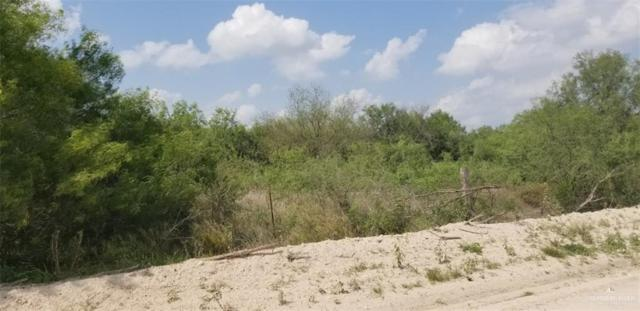00 E Curve Road E, Edinburg, TX 78539 (MLS #317555) :: The Lucas Sanchez Real Estate Team