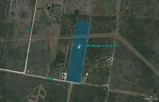 N/A Cr 175, Alice, TX 78333 (MLS #317583) :: HSRGV Group