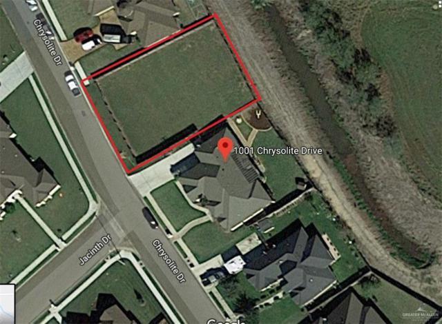 931 Chrysolite Drive, Weslaco, TX 78596 (MLS #317711) :: eReal Estate Depot