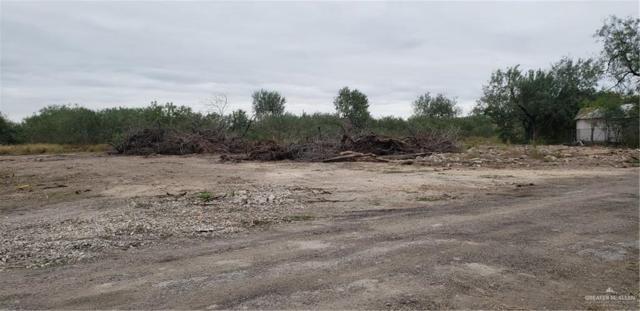 401 Datil Street, Hidalgo, TX 78557 (MLS #317739) :: eReal Estate Depot