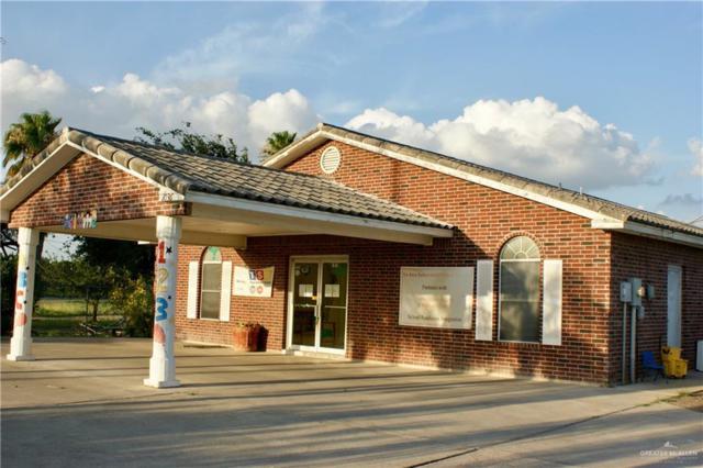 1036 E Goodwin Road, Palmview, TX 78572 (MLS #317847) :: HSRGV Group
