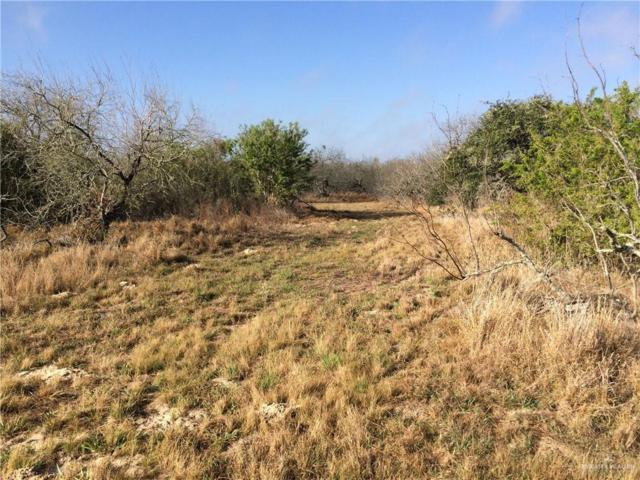 CR 304 W Las Cuatas Road, Encino, TX 78353 (MLS #318135) :: The Lucas Sanchez Real Estate Team