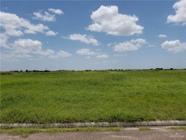 000 Arlina Drive, Edinburg, TX 78540 (MLS #318150) :: HSRGV Group