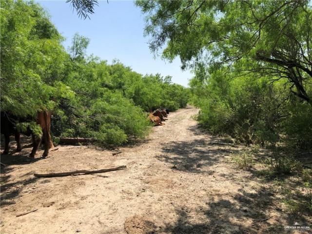 859 N Fm 649, Rio Grande City, TX 78582 (MLS #318321) :: HSRGV Group