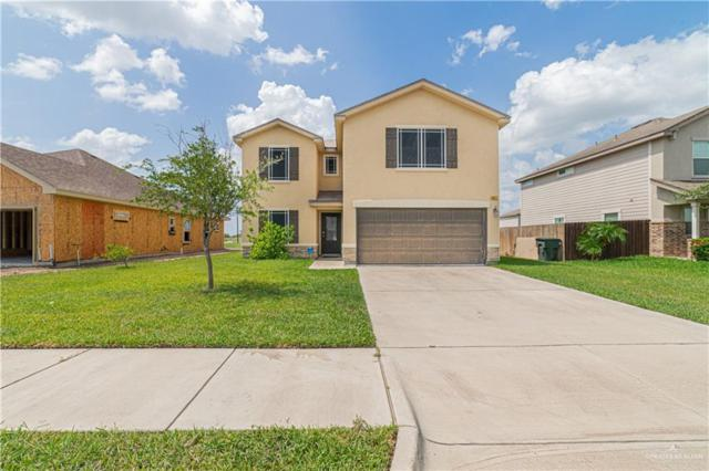 8822 Curlew Street, Harlingen, TX 78552 (MLS #318399) :: eReal Estate Depot
