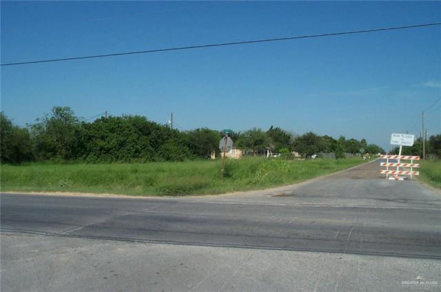 505 E Eldora Road E, Alamo, TX 78518 (MLS #318409) :: The Ryan & Brian Real Estate Team