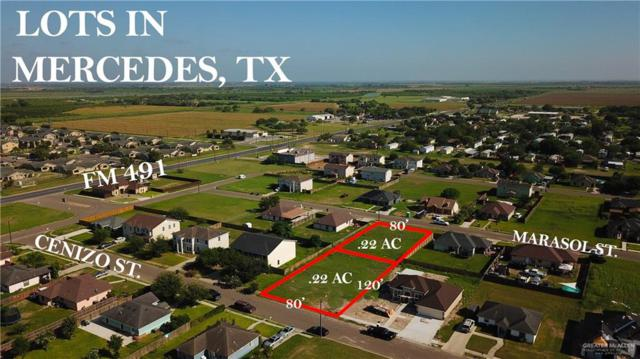 3810 Cenizo Street, Mercedes, TX 78570 (MLS #318646) :: HSRGV Group