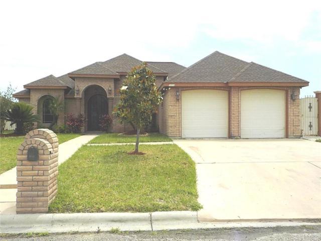 2454 Lady Palm Drive, Rio Grande City, TX 78582 (MLS #318747) :: HSRGV Group