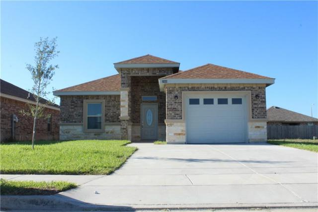 Rio Grande City, TX 78582 :: Realty Executives Rio Grande Valley