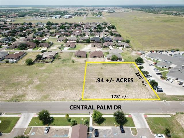 000 Central Palm Drive, Rio Grande City, TX 78582 (MLS #318917) :: eReal Estate Depot