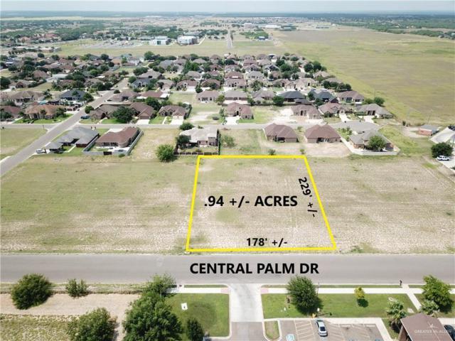 00 Central Palm Drive, Rio Grande City, TX 78582 (MLS #318918) :: eReal Estate Depot