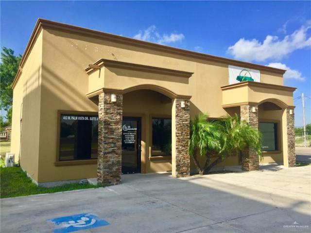 463 W Palma Vista Drive, Palmview, TX 78572 (MLS #319219) :: Realty Executives Rio Grande Valley