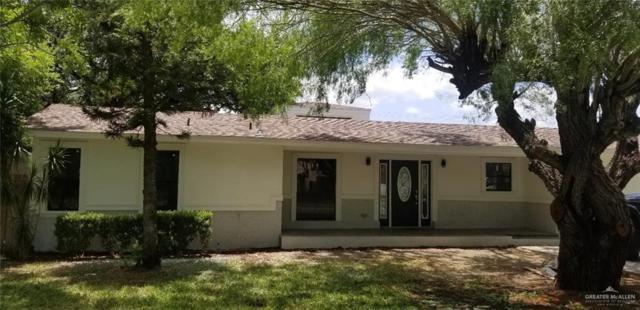 713 Tamarack Avenue, Mcallen, TX 78501 (MLS #319643) :: eReal Estate Depot