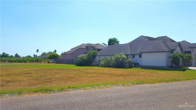 1008 Rhett Drive, Pharr, TX 78577 (MLS #319818) :: The Ryan & Brian Real Estate Team