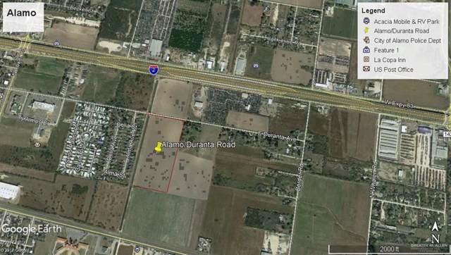300 Duranta Avenue, Alamo, TX 78516 (MLS #322878) :: The Ryan & Brian Real Estate Team