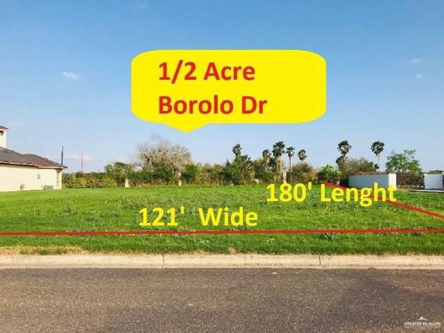 13336 Borolo Drive, Edinburg, TX 78541 (MLS #322907) :: Jinks Realty