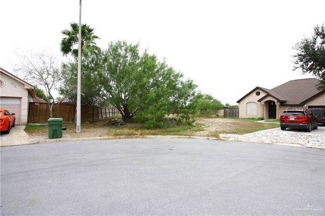 2007 Camelia Avenue, Hidalgo, TX 78557 (MLS #323673) :: The Ryan & Brian Real Estate Team