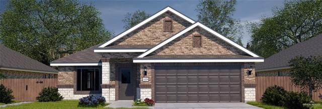 3920 Zenaida Avenue, Mcallen, TX 78504 (MLS #323889) :: Jinks Realty