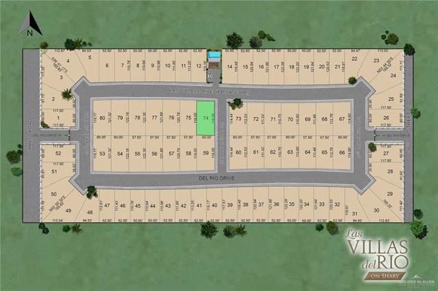 5801 Las Villas Drive, Mcallen, TX 78504 (MLS #324067) :: The Ryan & Brian Real Estate Team