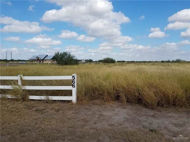 000 Buck Fawn Drive, Edinburg, TX 78541 (MLS #324318) :: Realty Executives Rio Grande Valley