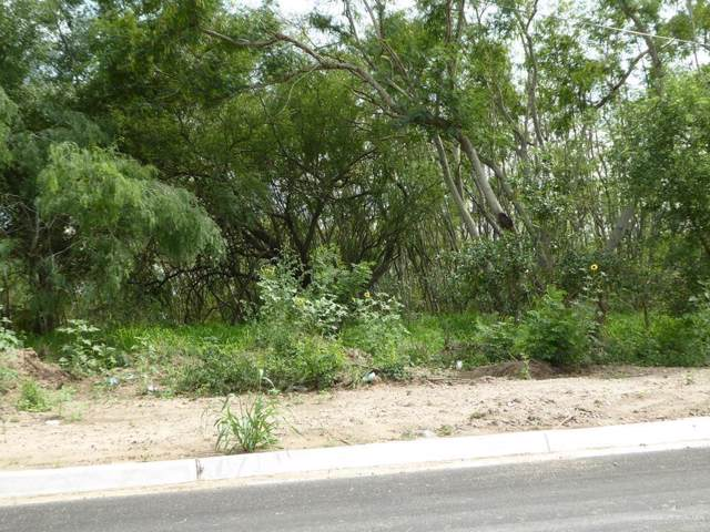 1200 W Anaquitas Street, Mercedes, TX 78570 (MLS #324383) :: BIG Realty