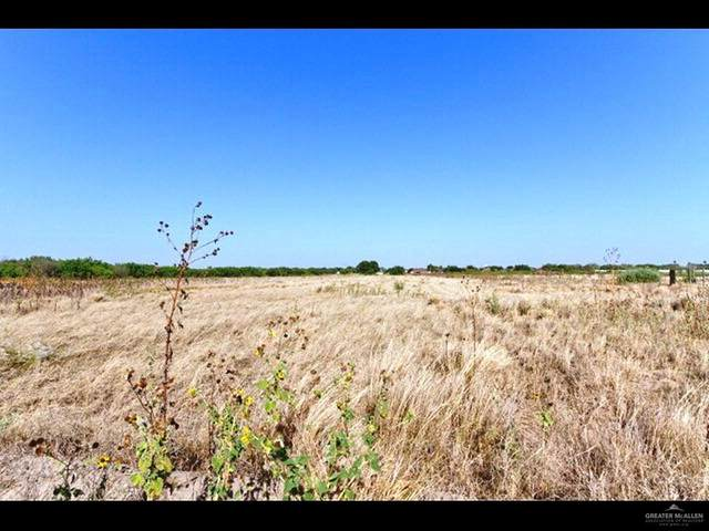 00 N Jesus Flores Road, Monte Alto, TX 78538 (MLS #325107) :: BIG Realty