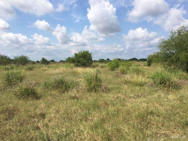 TBD E Fm 490, Edinburg, TX 78549 (MLS #325458) :: The Lucas Sanchez Real Estate Team