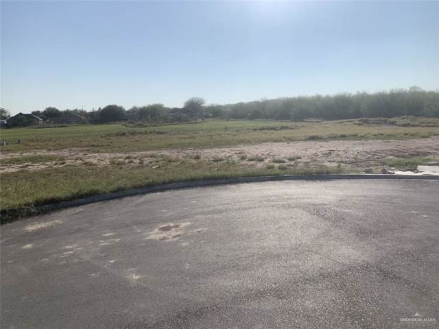 1120 W Eisenhower Avenue, Alton, TX 78573 (MLS #325505) :: eReal Estate Depot