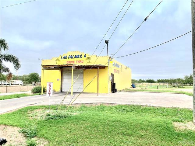 9836 N Bentsen Palm Drive, Mission, TX 78574 (MLS #325613) :: eReal Estate Depot
