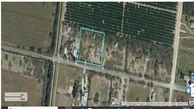 000 Mile 8 Road, Mission, TX 78574 (MLS #325705) :: Jinks Realty