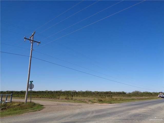 TBD S Alamo Road, Alamo, TX 78516 (MLS #326575) :: Jinks Realty