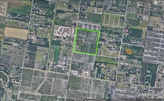 7000 N Shary Road, Mcallen, TX 78504 (MLS #326736) :: The Ryan & Brian Real Estate Team