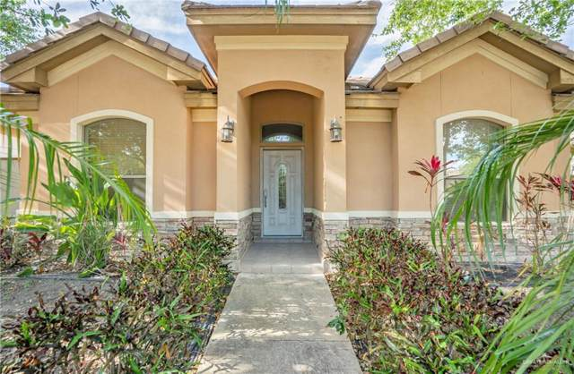 613 E Thornhill Avenue, Mcallen, TX 78503 (MLS #327075) :: Realty Executives Rio Grande Valley