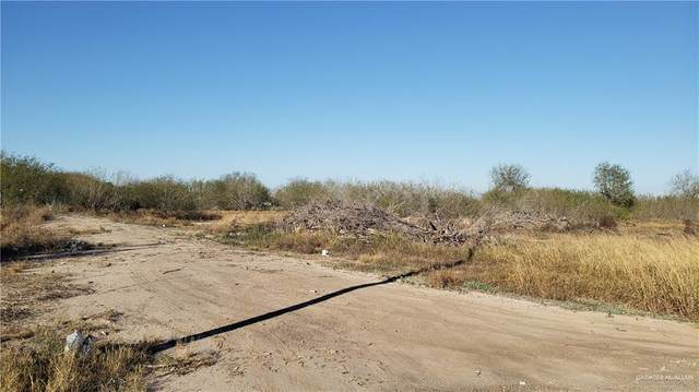 401 E Datil Street E, Hidalgo, TX 78557 (MLS #328937) :: eReal Estate Depot