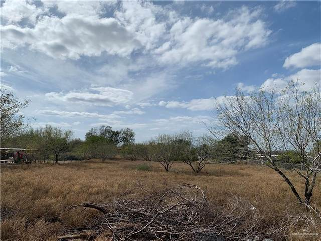 77713 Sabal Palm Drive, Penitas, TX 78576 (MLS #329216) :: The Ryan & Brian Real Estate Team