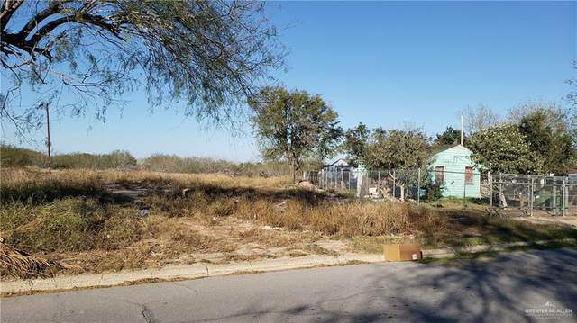 401 E Datil Avenue E, Hidalgo, TX 78557 (MLS #329241) :: eReal Estate Depot