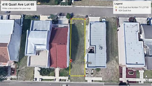 416 Quail Avenue, Mcallen, TX 78504 (MLS #329408) :: eReal Estate Depot