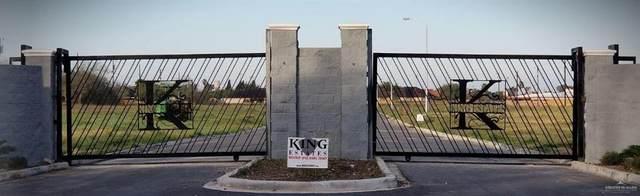 101 N Pleasant View Drive, Weslaco, TX 78596 (MLS #329561) :: eReal Estate Depot