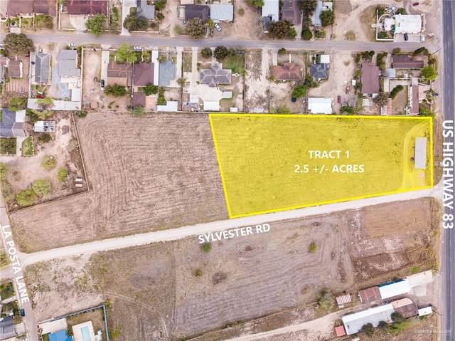 01 Sylvester Road, Rio Grande City, TX 78582 (MLS #330304) :: eReal Estate Depot