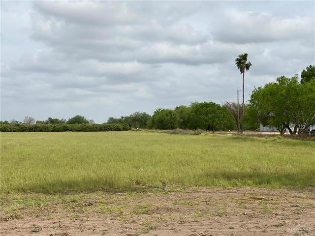 000 Main Boulevard, Alton, TX 78573 (MLS #330599) :: Jinks Realty