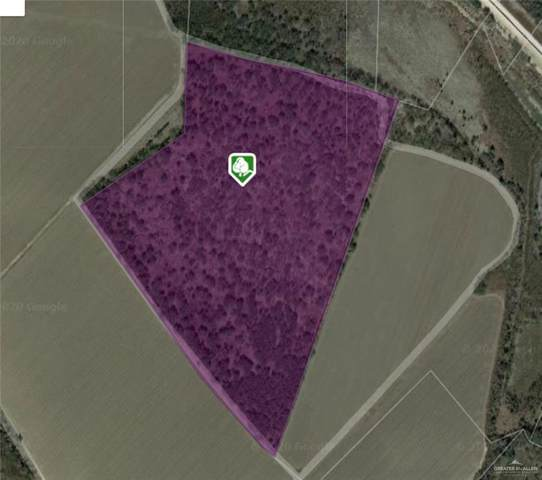 00 Military Road W, Mission, TX 78572 (MLS #331288) :: Jinks Realty