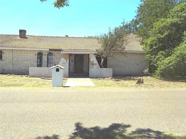 4001 Ware Del Norte, Mcallen, TX 78504 (MLS #333126) :: eReal Estate Depot